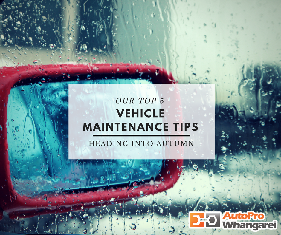 5 Autumn Tips